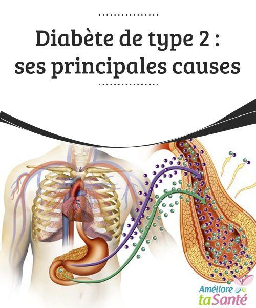 Diabète de type 2 : ses principales causes  Savez-vous vraiment en quoi consiste le diabète de type 2 ? Nous vous proposons de découvrir les #causes de ce #diabète dans notre article !  #Bonneshabitudes