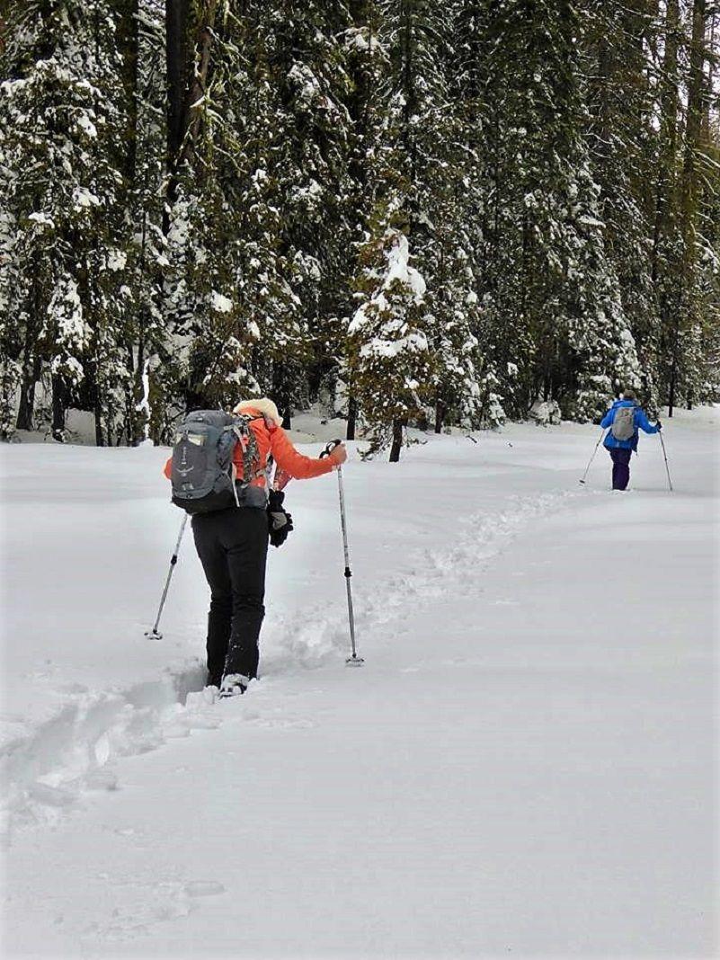 Snowshoeing To Dewey Point During The Government Shutdown Sierra News Online Government Shutdown Government Yosemite Valley