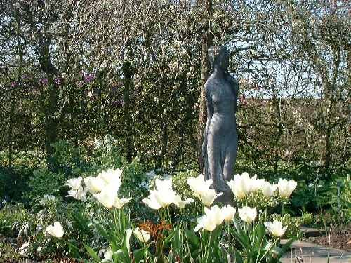 White Garden At Sissinghurst ,this Is The Vestal Virgin Statute