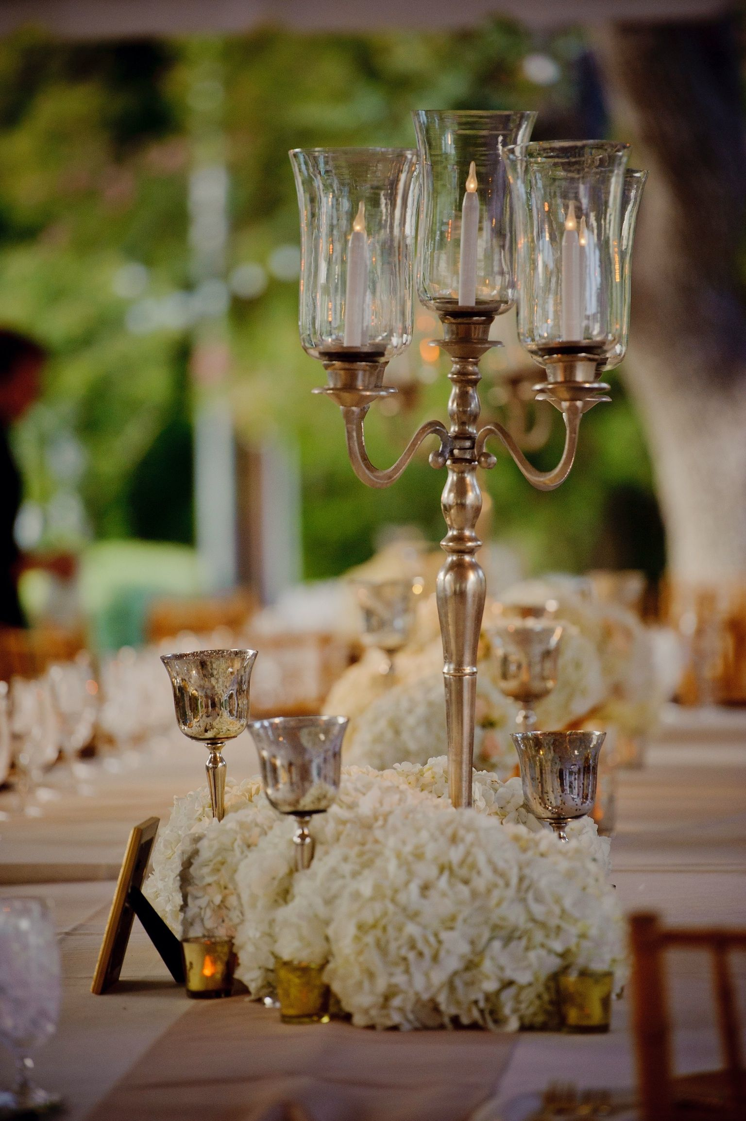 Love The Laying Hydrangeas So Sexy Medium Centerpiece Idea Silver