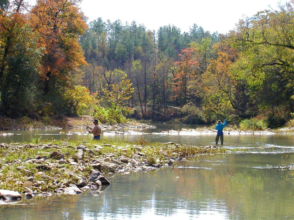 Fly Fishing In Oklahoma Fly Fishing Fish Gone Fishing