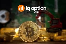 Will cryptocurrency become fiat money