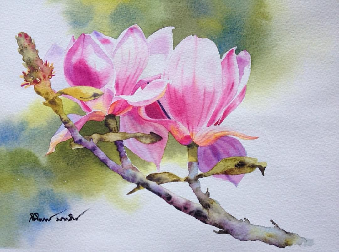 Pin by andrea c on art animation pinterest for Watercolor painting flowers