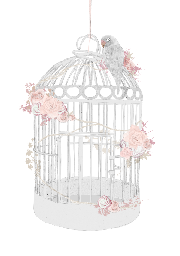 Antique bird cage drawing - photo#52