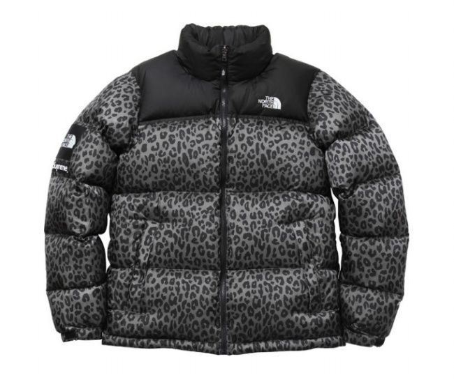 Supreme x The North Face Leopard Print Down Jacket