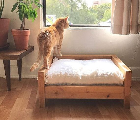 Designed With Comfort And Style In Mind Cozy Cama Pet Furniture Is Perfect For Cat Parents Looking For A Washa Raised Dog Beds Elevated Dog Bed Modern Cat Bed