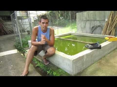Organic Farming in the Philippines (reality TV, episode 17 ...