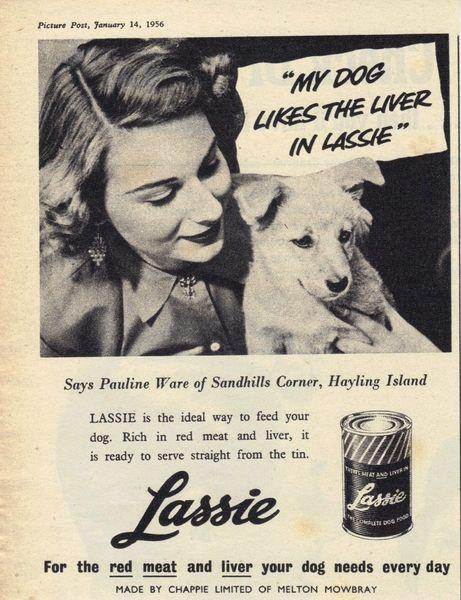 10 Mouthwatering Vintage Dog Food Ads Pet Advertising Vintage