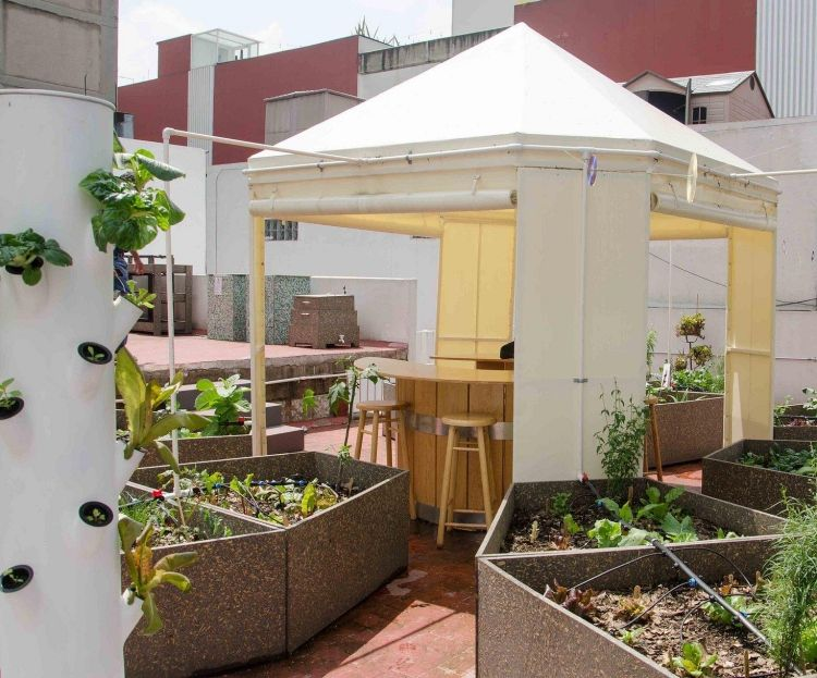 Hochbeet Balkon Selber Bauen Bepflanzen Dachterrasse Sonne Container