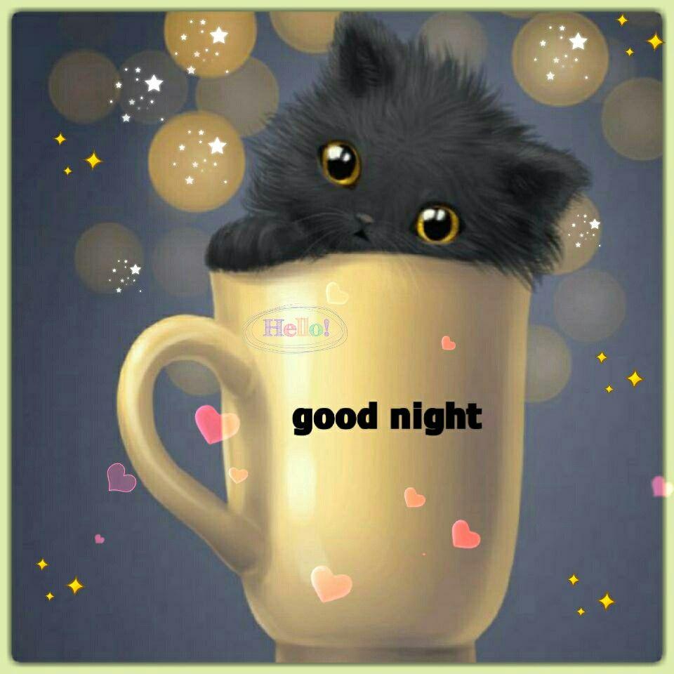 Good night sister happy dreams