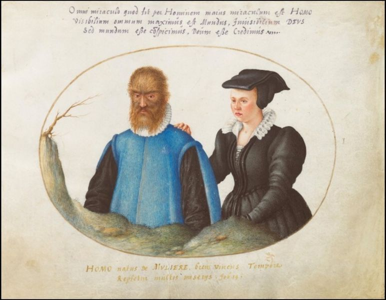 Tales Of Faerie Petrus And Catherine Gonsalvus Historical Beauty