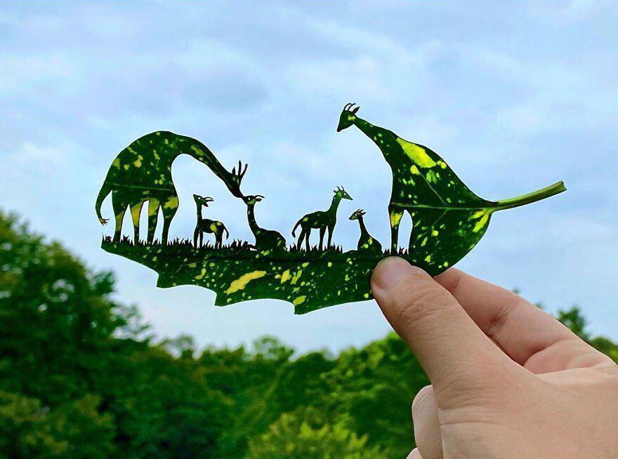 Un artista japonés crea intrincadas escenas en las hojas de los árboles -  Cultura Inquieta en 2020 | Artistas japoneses, Artistas, Arte de hoja