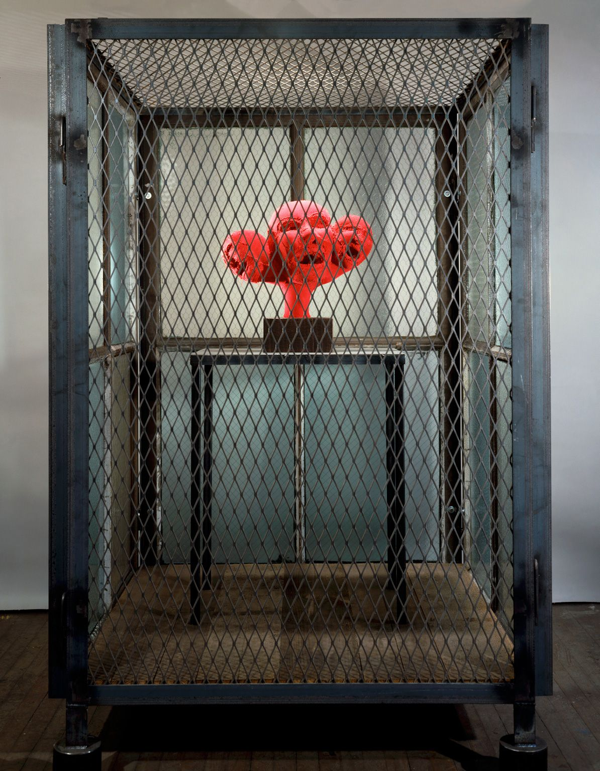 Louise Bourgeois Cell Xiv 2000