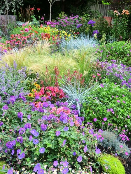 An interesting combination of colorful grasses perennials for Grass plants for flower beds