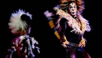 Pin By Forestein Lambert On June Cats Musical Cats New York Cats