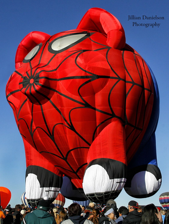 Spider pig hot air balloon at ABQ Balloon fest. photo by