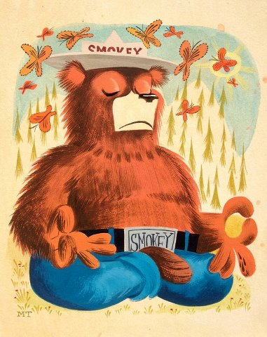 Is This Yoga The Bear Lol Smokey The Bears Bear Art Smokey