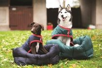 Waterproof dog bed, ideal for home or the car.  #dogs