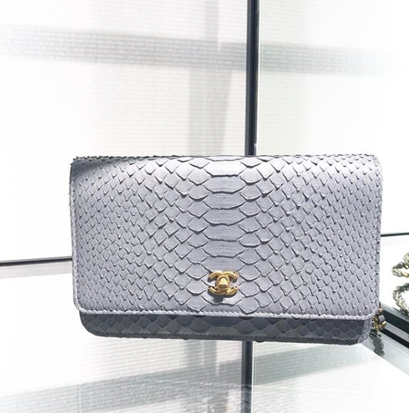 6cce62304228 Chanel dove grey python WOC | Bags | Bags, Chanel, Purses