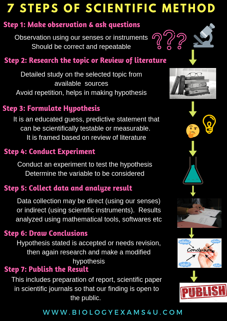 7 Steps Of Scientific Method With Explanation Poster Super Simplified Summary Of Scienti Scientific Method Scientific Method Steps Scientific Method Printable