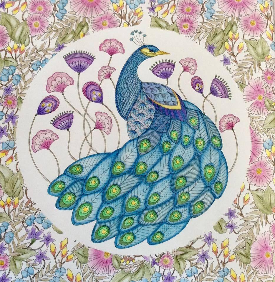 Millie Marotta\'s Animal Kingdom | Adult Coloring Inspiration ...