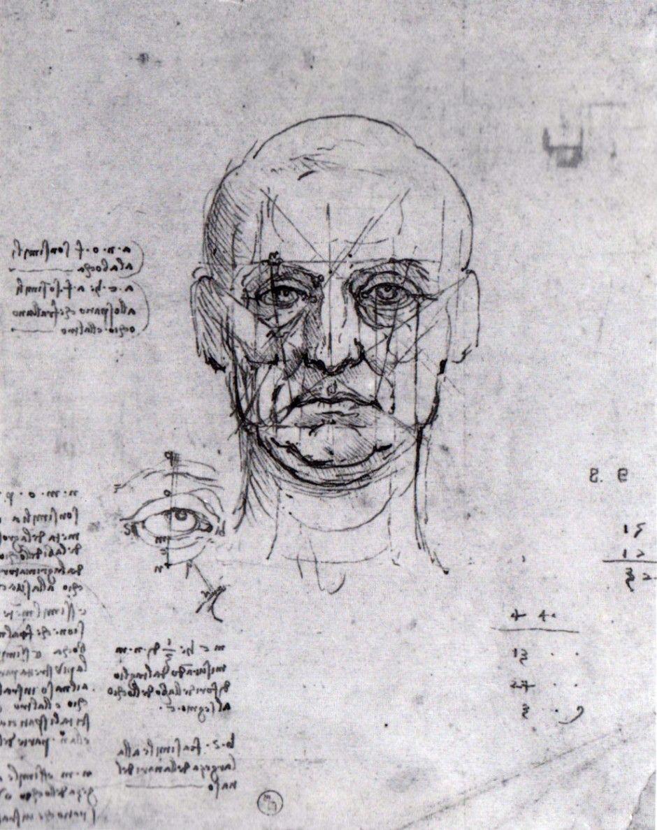Head and Eyes - Study of Proportions Leonardo da Vinci -