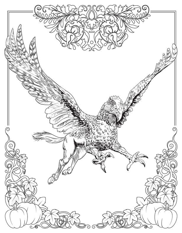 fantastic beasts coloring pages free | fantastic beasts printables | Harry Potter Wand Coloring ...