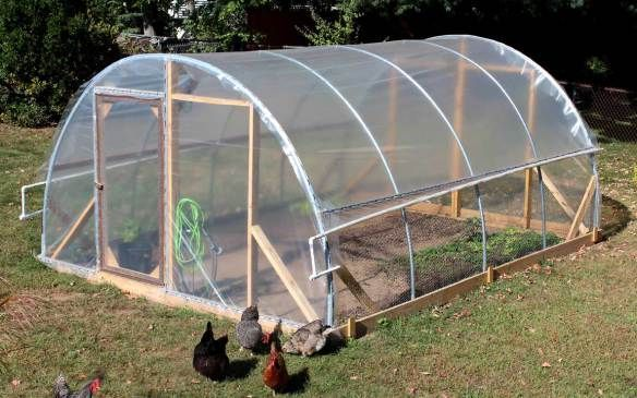 Mr Crazy Kicks - Early Retirement | Build a greenhouse ...