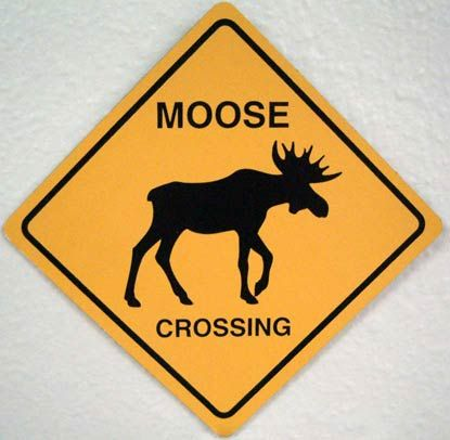 moose crossing sign would be great for the front door for jim
