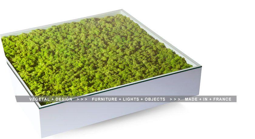 meamea design v g tal tableau v g tal stabilis plante stabilis e arbre stabilis id e. Black Bedroom Furniture Sets. Home Design Ideas