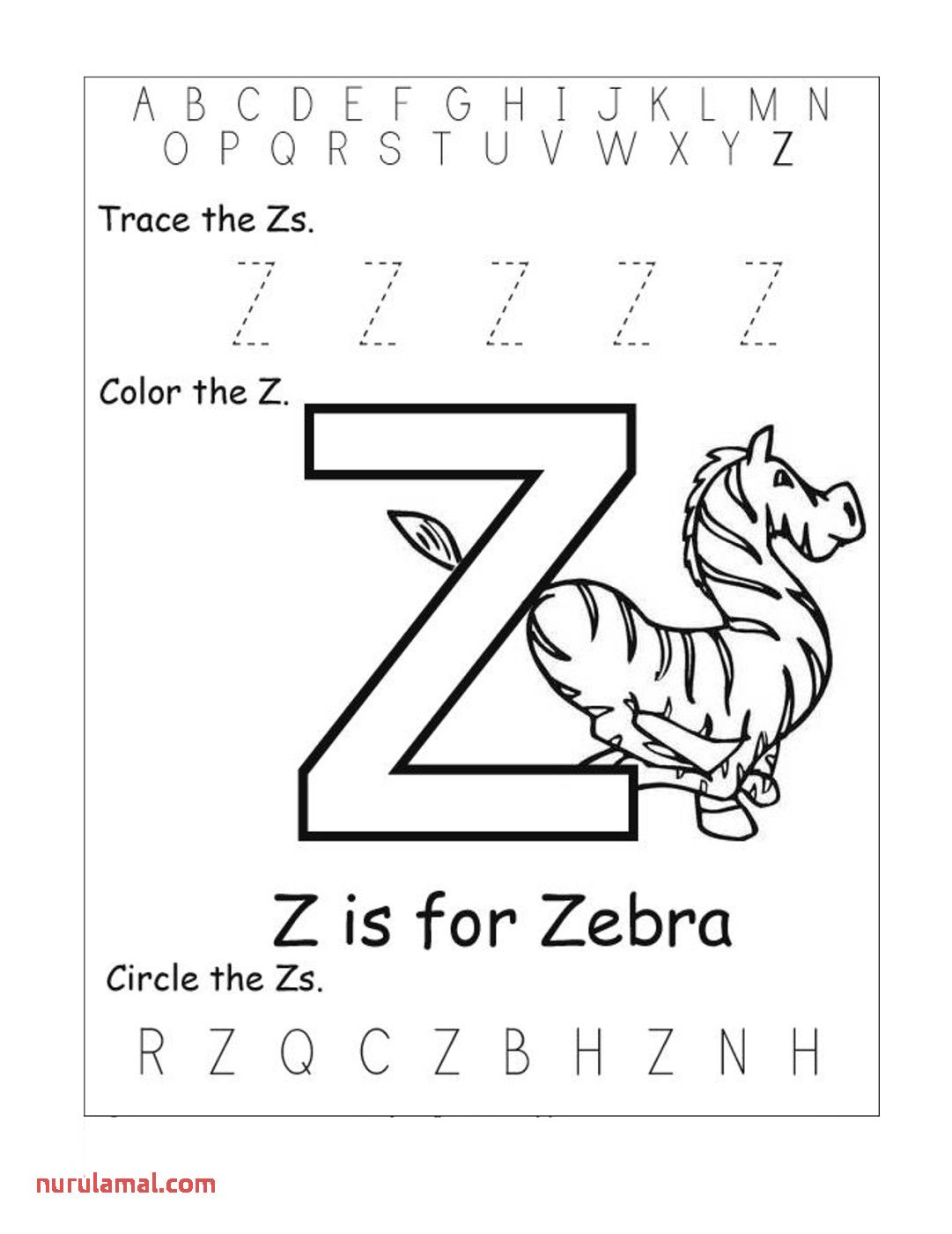 Letter Z Worksheets For Kids 2 In
