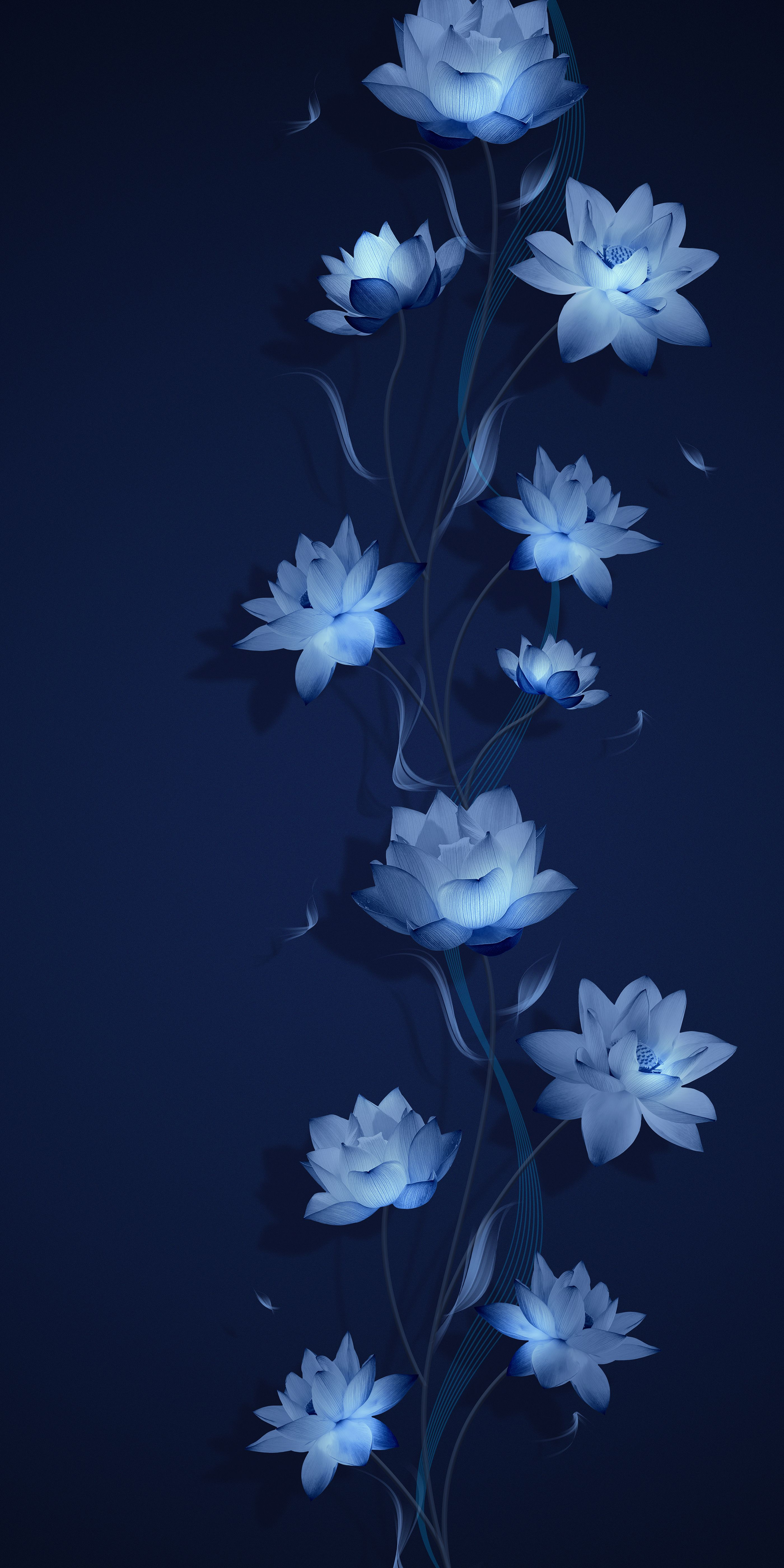 Lg Hausys On Behance Flower Background Wallpaper Flower Iphone Wallpaper Blue Flower Wallpaper