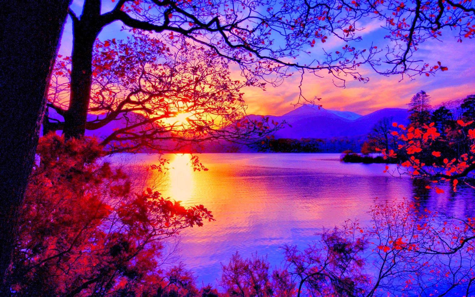 Image Result For Senary Autumn Landscape Scenery Background Beautiful Sunrise