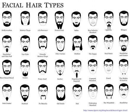 beard #facial #hair #types #men | interesting | Pinterest | Facial ...