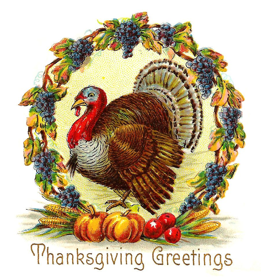 Antique Images: Free Thanksgiving Day Graphic: Thanksgiving Turkey with  Wreath of Purple … | Thanksgiving clip art, Vintage thanksgiving cards,  Vintage thanksgiving