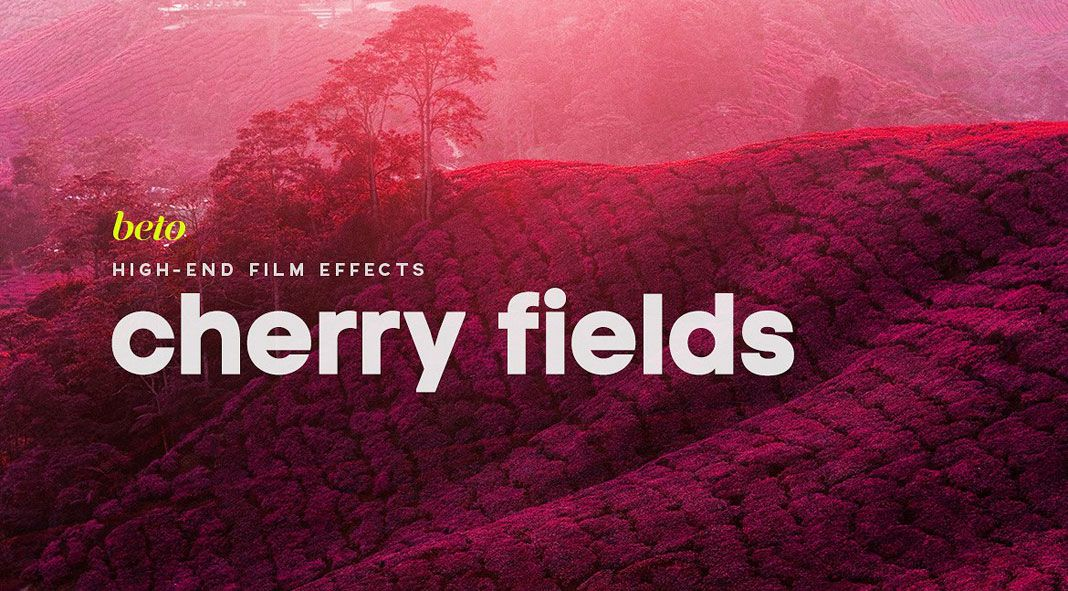 Infrared Photoshop Action: Cherry Fields