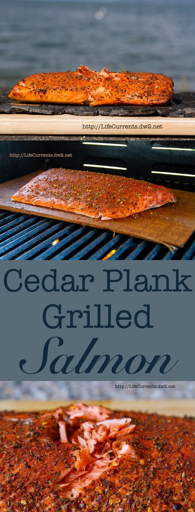 Cedar Plank Grilled Salmon #seafood #salmon #grilled How To Grill
