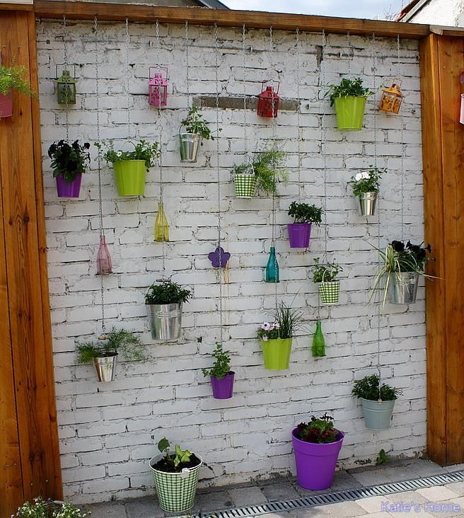 Mur Vegetal Exterieur A Faire Soi Meme Attrayant Mur Vegetal
