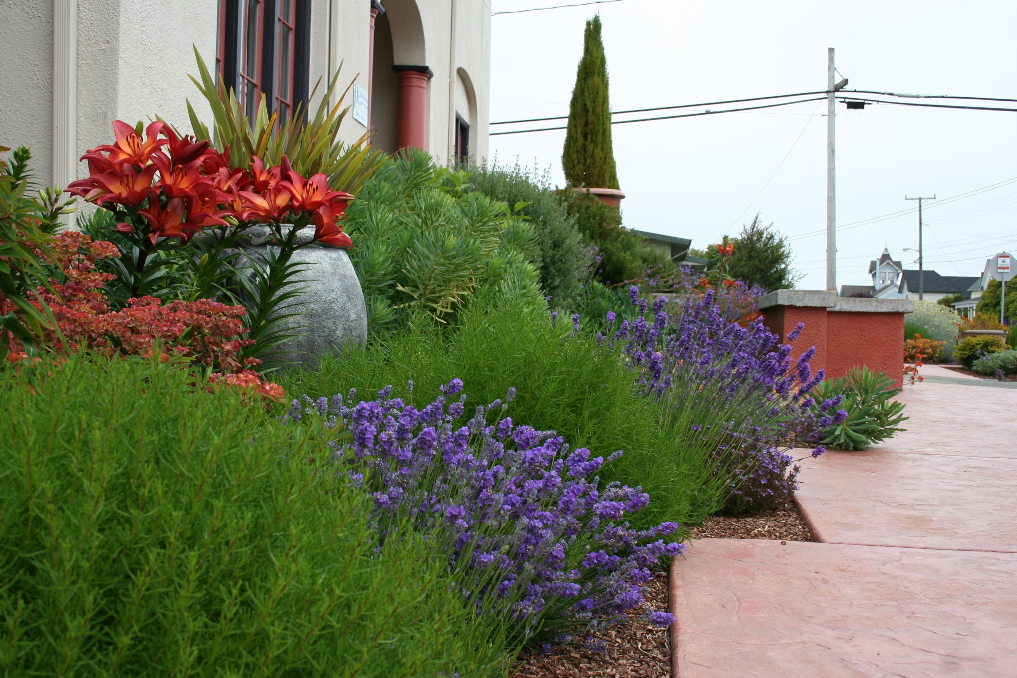 Mediterranean Garden Design How To Create A Tuscan Garden 400 x 300