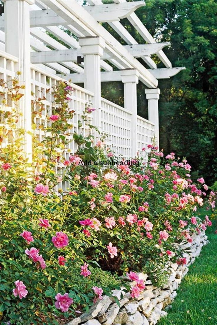 Ultimate Trellis Ideas Iron thats you Love 6614 ideas