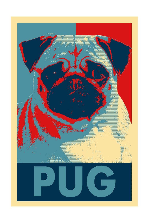 Pin En My Sexy Pug