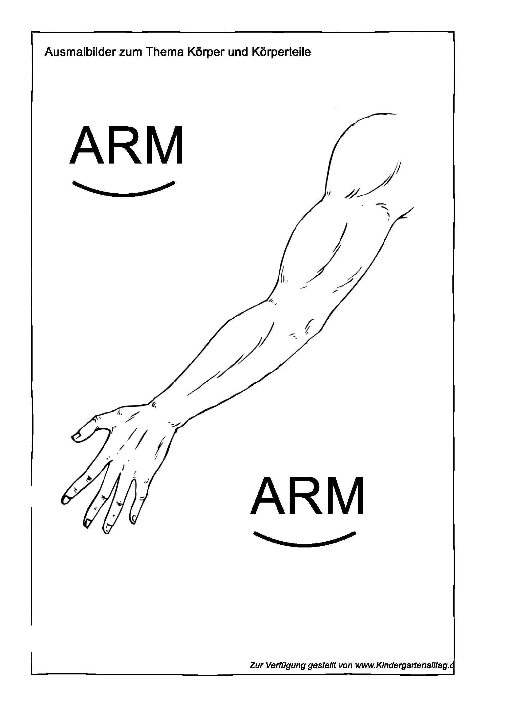 Ausmalbilder zum Thema Körper und Körperteile