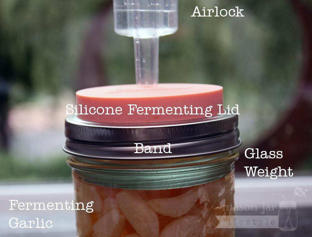Fermentation Starter Kit For Wide Mouth Mason Jars Wide Mouth