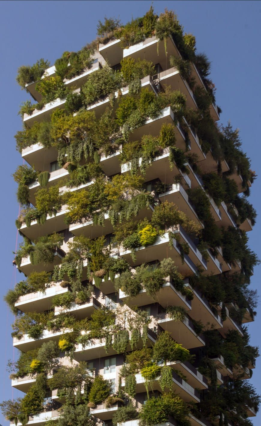The Vertical Forest towers in Milan by Boeri. Phenomenon