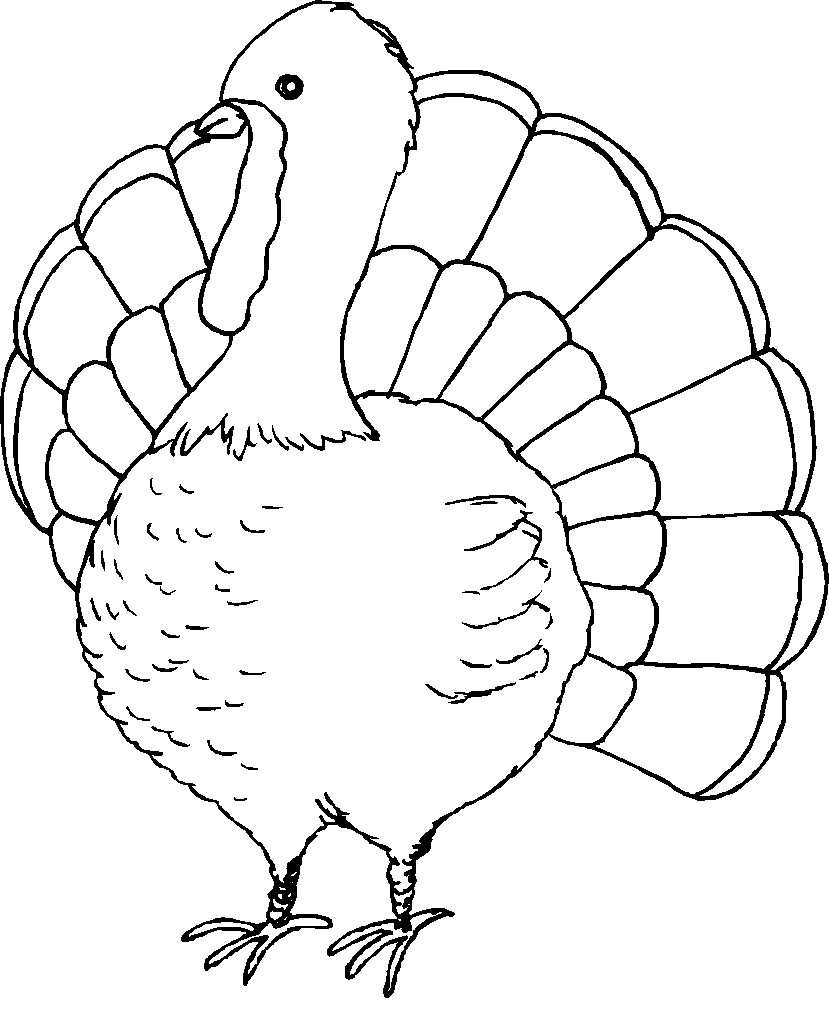 Free Coloring Pages Turkey | Seasonal Sheets | Pinterest