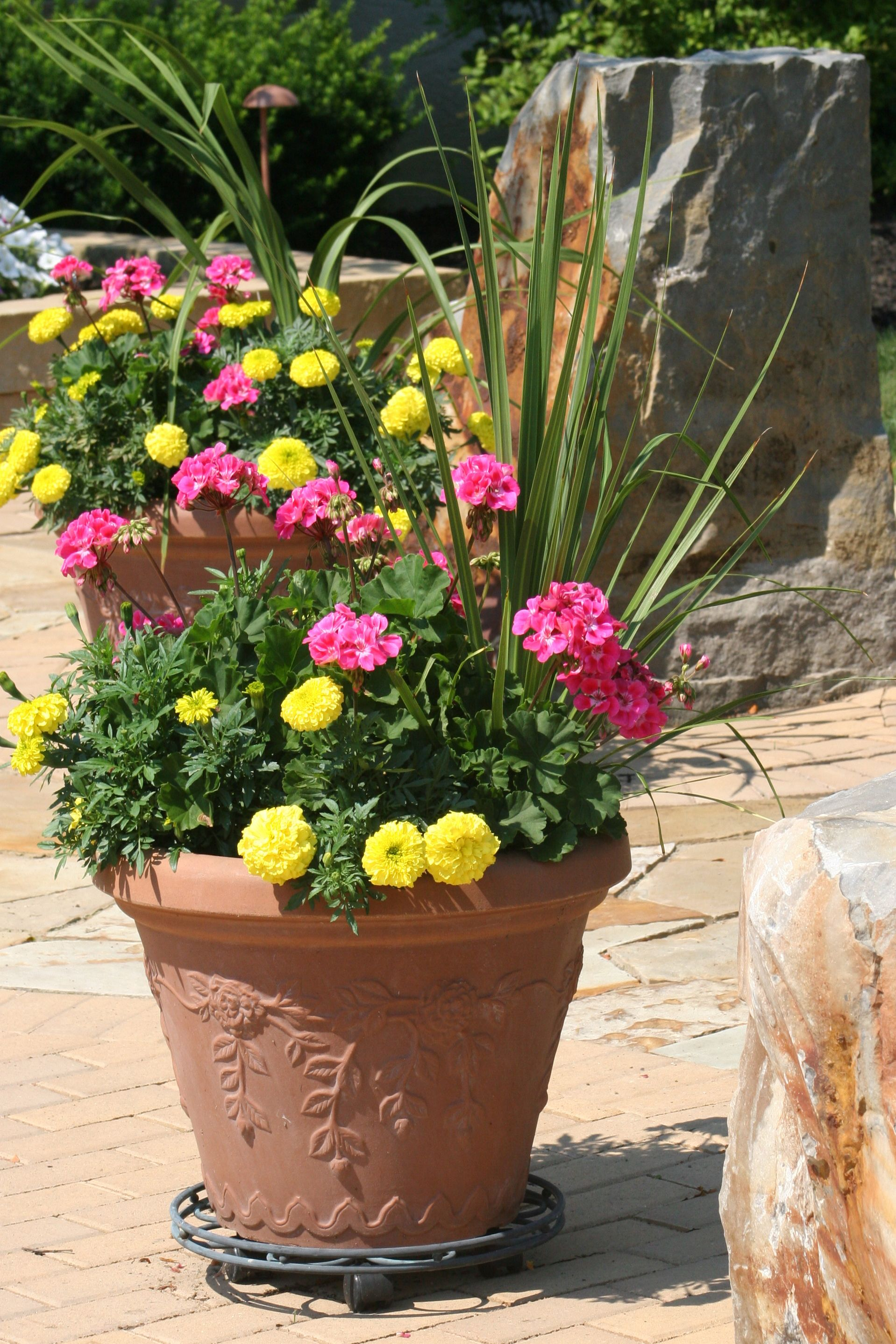 How To Plan And Maintain A Healthy Large Container Garden.