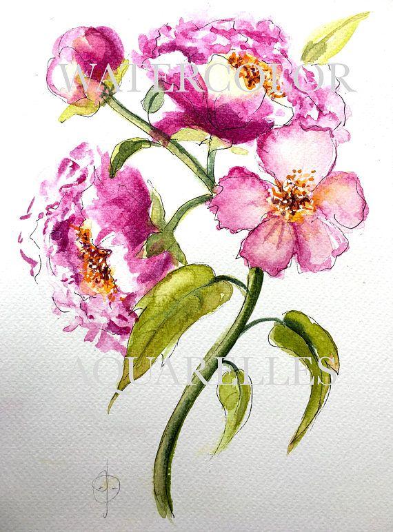 Aquarelle Fleurs De Piritta Salonen Du Tableau Maalauksia