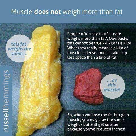 Healthy weight loss per week kilos photo 6