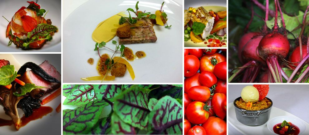 A sample of our dishes and locally sourced produce