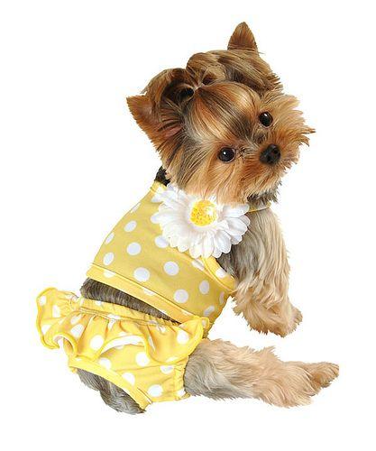 Yellow Polka Dot Bikini By Lulu Pink 9 99 Lulu Pink S Itsy Bitsy